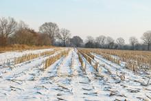 Schneebdeckte Winterlandschaft...