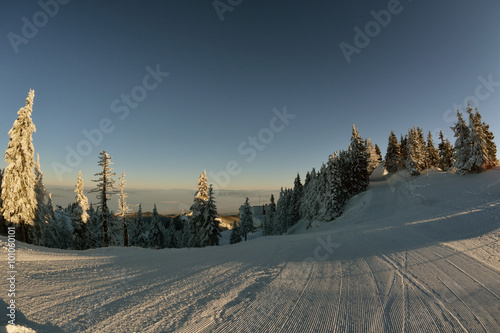 Foto op Aluminium Blauw winter story. sunrise at the top of Postavarul mountain. Brasov Romania. Low key, dark background, spot lighting, and rich Old Masters.