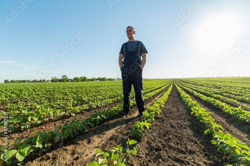 Proud farmer in green soybean field Billede på lærred