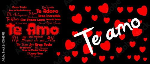 dia del amor y la amistad Canvas Print