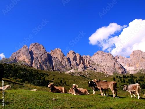 Photo  Dolomiti in estate