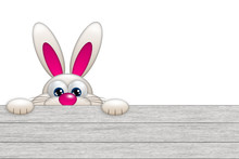 Easter Bunny Looking By The Wo...