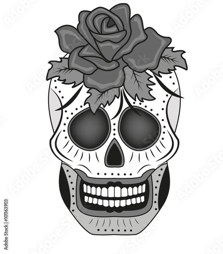 A Skull With Rose Vector Isolated On White Teschio Con Rosa