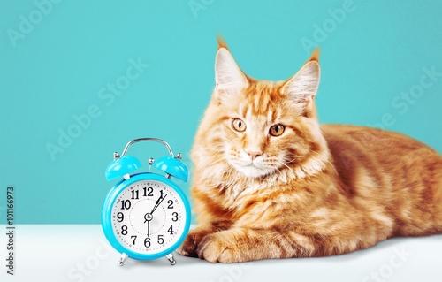Photo  Clock.