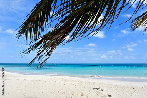 Foto auf Acrylglas Tropical strand Flamenco beach on Culebra island