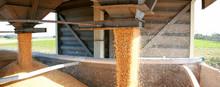Stockage Des Céréales En Silo