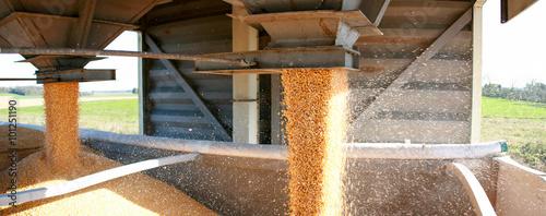 Obraz na plátně  stockage des céréales en silo
