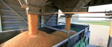 Silo à Grain Et Transport Cam...