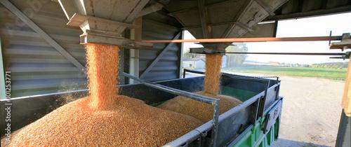 Fototapeta Silo à grain et transport camion du blé