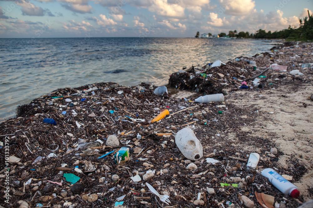 Fototapeta Plastic Garbage Washed onto Beach