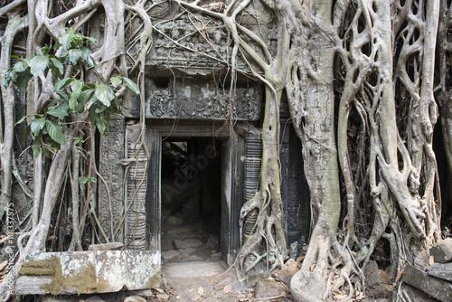 Foto op Plexiglas Bedehuis Ruinas y templos de Angkor Wat, puerta de piedra con raices, Banteay Kdei, Templo Ta Prohm, Preah Khan. Camboya.
