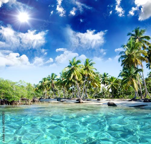 Entspannung, Relaxen: Traumurlaub an einem einsamen Strand in der Karibik :) Plakat