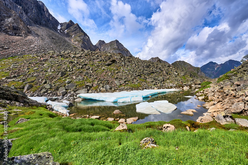 Fotobehang Olijf Alpine meadow with green onions at a small lake with ice