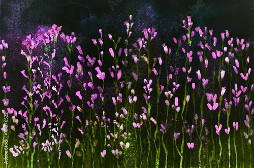 Photo  Lavender in fictive colors against a night sky