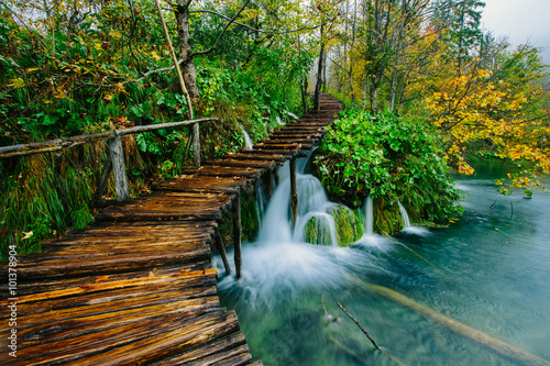 Fotobehang Weg in bos Deep forest stream with crystal clear water with pathway. Plitvice lakes, Croatia