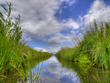 Freshwater Ditch In Dutch Polder Landscape