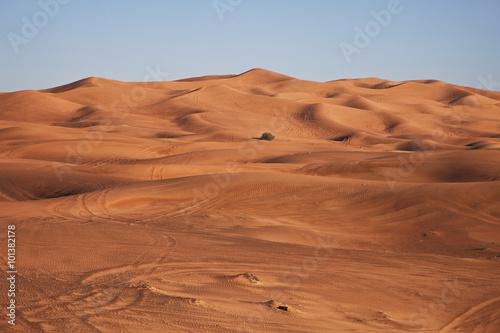 Staande foto Zandwoestijn Arabian Desert