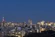 東京都市風景 東京スカイツリーと都心の街並 丸の内 新宿 水道橋方面 夜景
