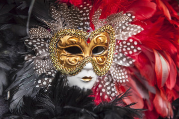 Obraz na Szkle Do sypialni Venetian Mask