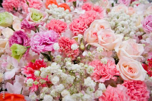 Poster Fleuriste Beautiful flowers background