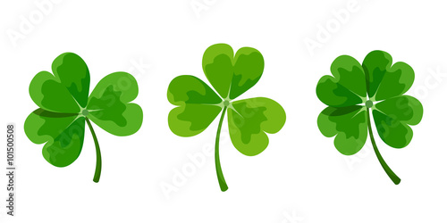 Papel de parede Vector set of green clover leaves (shamrock) isolated on a white background