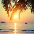 Beautiful sunset on the tropical coast.