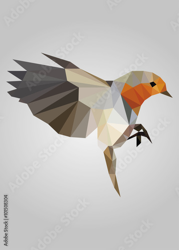 Flying bird standing and looking vector