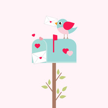 Lovely Mailbox And Bird