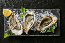 Oysters Served On Stone Plate ...