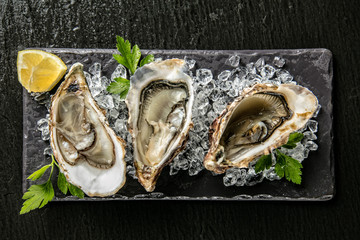 Fototapeta Do gastronomi Oysters served on stone plate with ice drift
