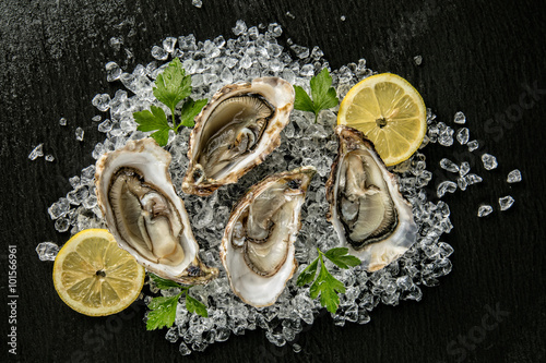 Oysters served on stone plate with ice drift Canvas Print