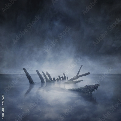 Photo sur Toile Naufrage Sunken Boat Remains