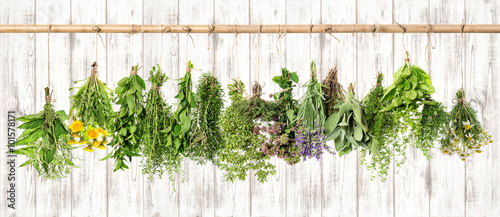 Photo  Medicinal herbs. Herbal apothecary. Lavender, dandelion, nettle