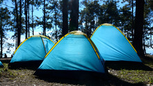 Holiday Camping Under Tree Agent Sun Lighting