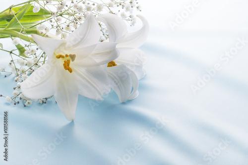 ユリの花 Canvas Print
