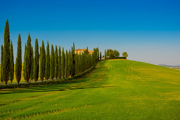 Fototapeta Villa in Tuscany with cypress road and blue sky, idyllic seasonal nature landscape vintage hipster background
