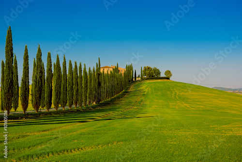 Villa in Tuscany with cypress road and blue sky, idyllic seasonal nature landscape vintage hipster background - 101605116