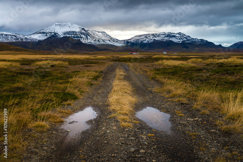 Fotografie, Obraz  Rough road perspective in yellow field with snow mountain background in cloudy d
