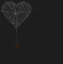 Heart From The Web Of A Spider On Web