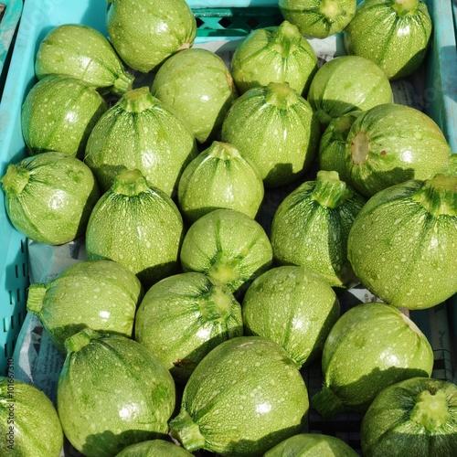 Fototapeta Round green zucchini courgettes obraz