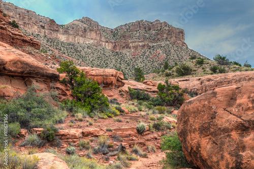 Fotografie, Obraz  AZ-Grand Canyon National Park-N Rim-Toroweep area