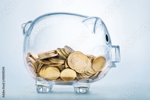 Fotografie, Obraz  A see through piggy bank