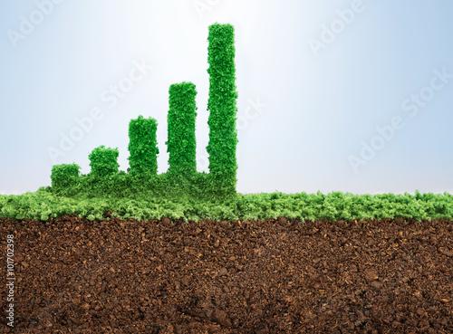 Fotografía  Business growth