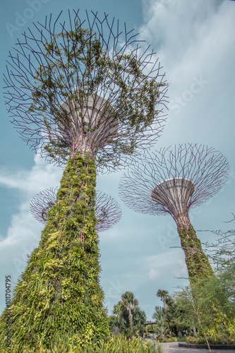 Spoed Foto op Canvas Singapore Super tree Grove Gardens in Singapore