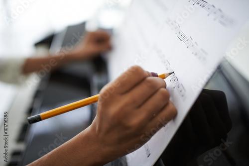 Cuadros en Lienzo  Compositora