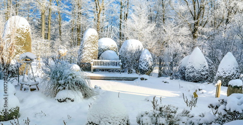 Foto op Canvas Tuin Winter im Garten