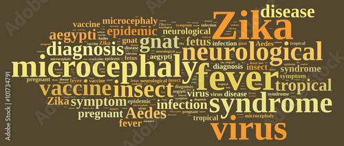 Fototapety, obrazy: Word cloud on the Zika virus.