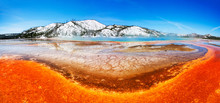 Colorful Yellowstone Pool (Gra...