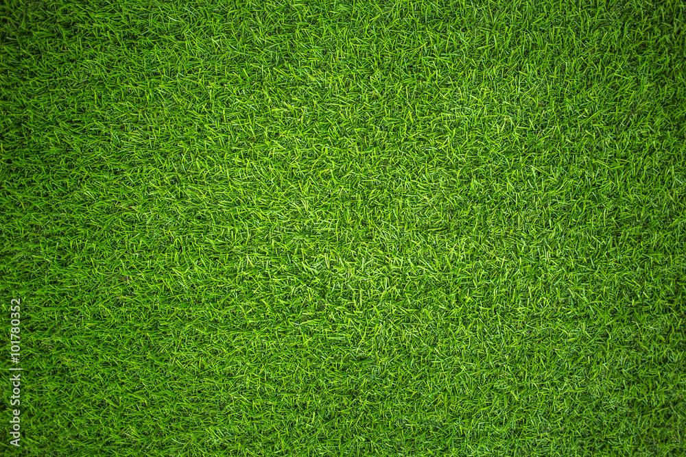 Fototapety, obrazy: artificial grass