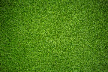 Fototapeta artificial grass